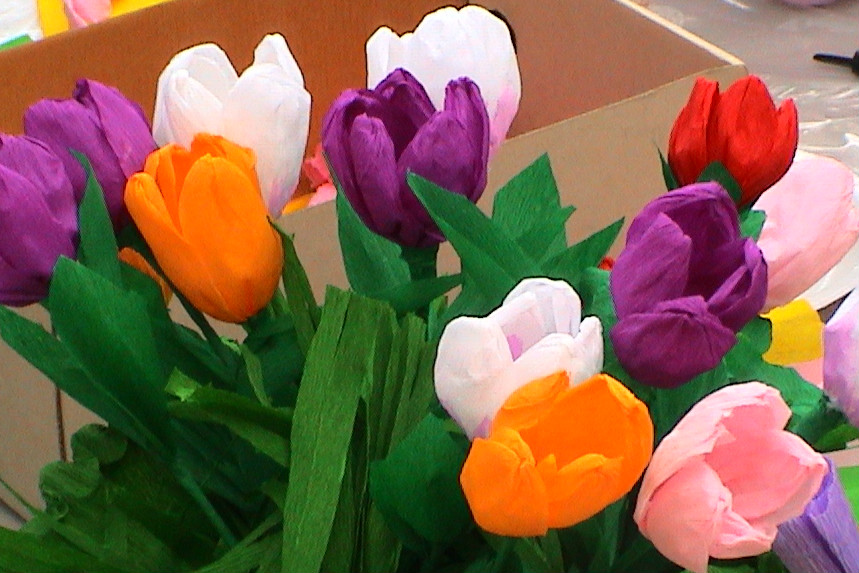 Banchetto tulipani alla festa della scuola 06